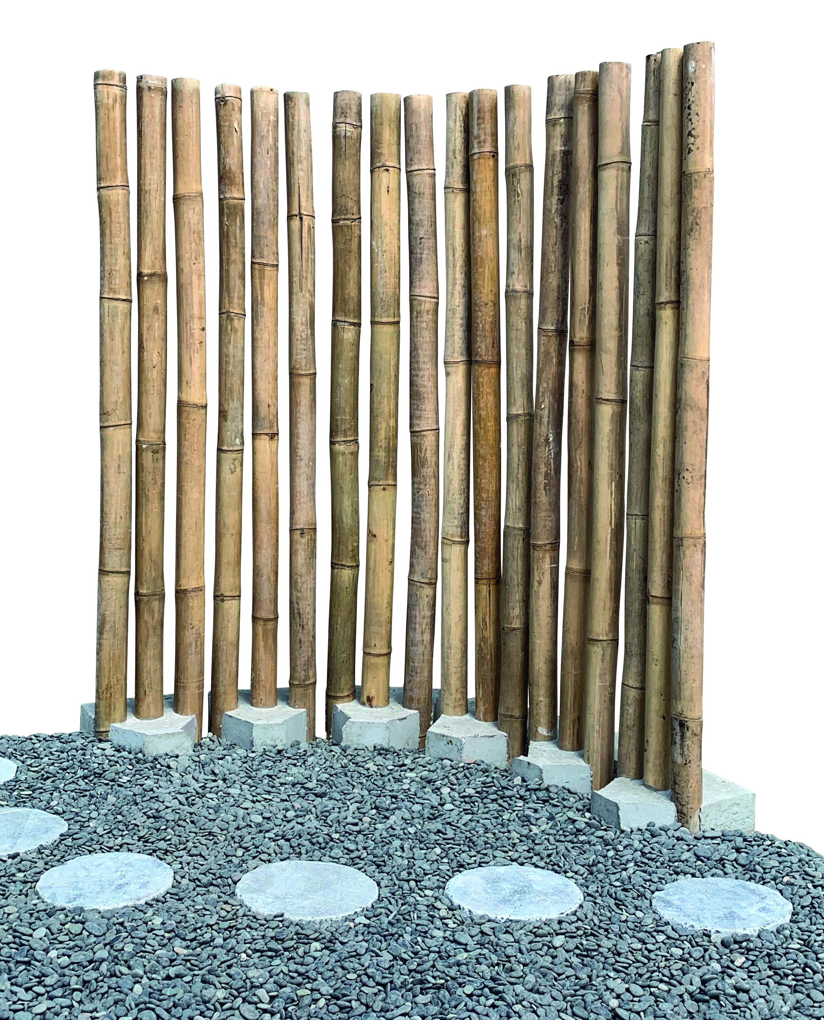 Bambus Palisade m.Sockel 3er Set 200cm H 35cm B